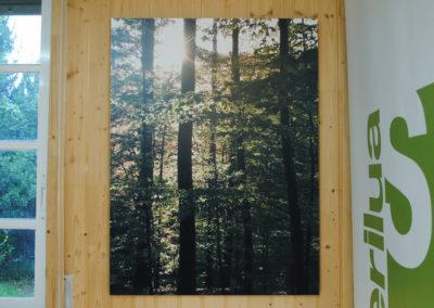 Cartón bosque - Impresión digital- SERILUA
